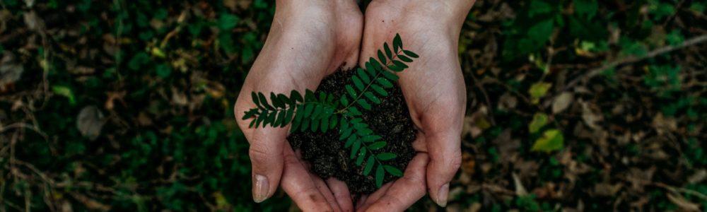 L'objet média, est un excellent témoin des actions concrètes déployées par les entreprises en matière d'engagements social et environnemental.