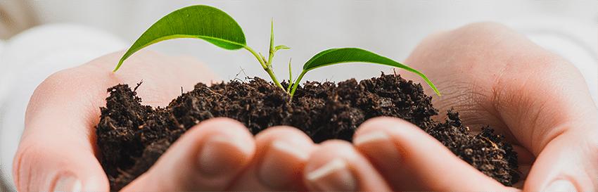 engagement environnemental et social entreprise